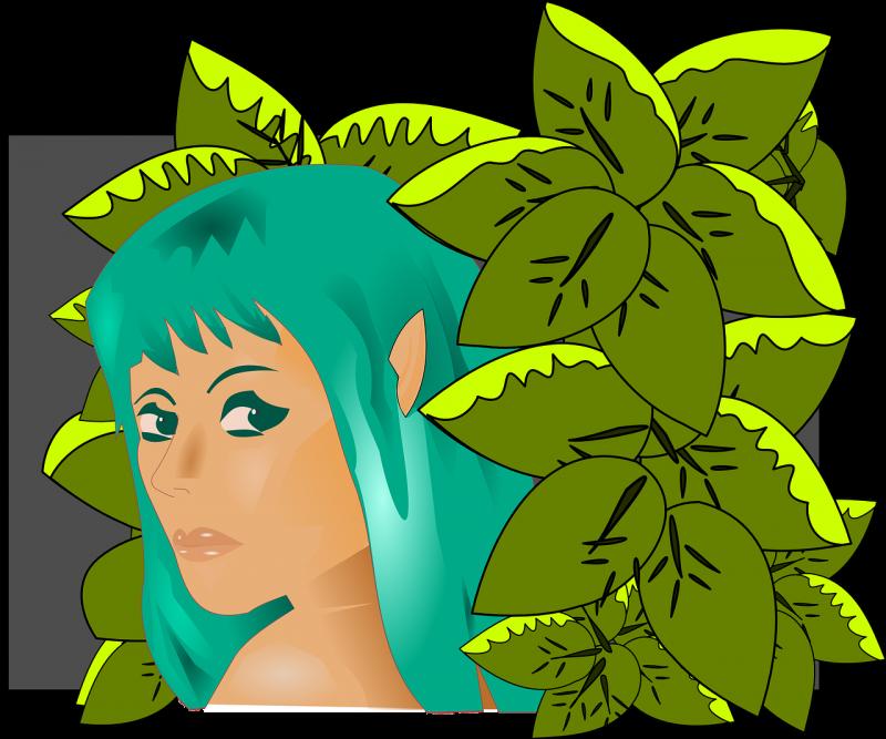 los elfos, tipos, información, características, mitología