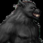 Hombre lobo o licántropo