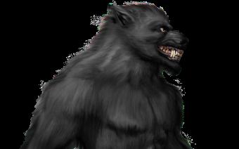 Hombre lobo, licántropo